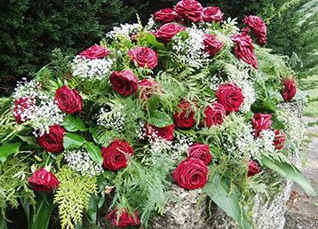 Roses on a bolder.